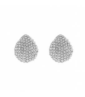 Zilverkleurige ovale oorclips
